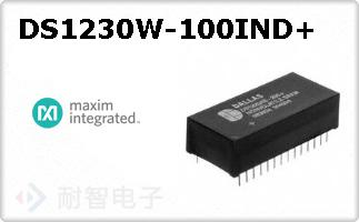 DS1230W-100IND+
