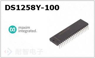DS1258Y-100