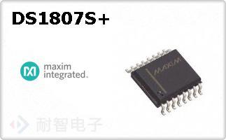 DS1807S+