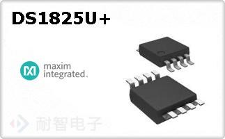 DS1825U+