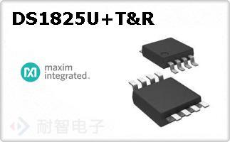 DS1825U+T&R
