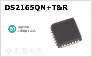 DS2165QN+T&R