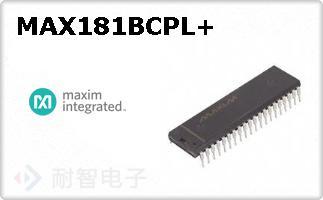 MAX181BCPL+